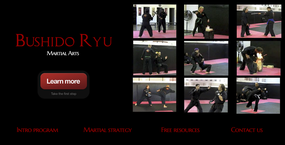 Krav Maga fort lauderdale martial arts self defense